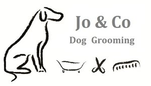 Jo & Co Dog Grooming